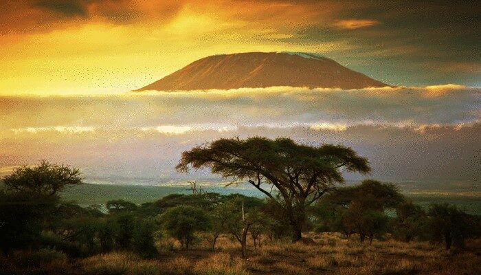 mount Kilimanjaro under clouds